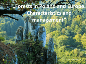 Slajd 1 - YPEF Young People in European Forests