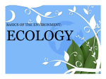 basics of the environment: ecology