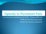 Opioids in Persistent Pain