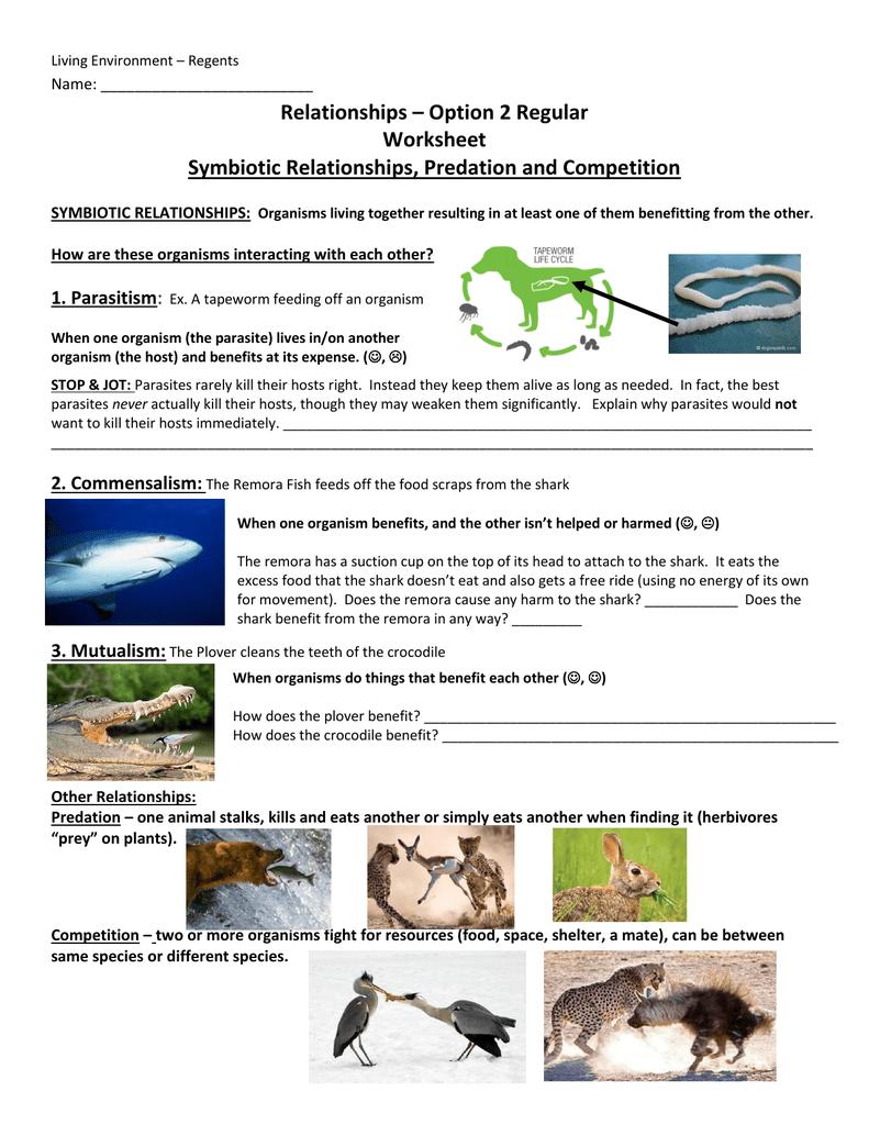 Worksheets Symbiotic Relationships Worksheet file biology by napier