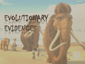 Evolutionary Evidences