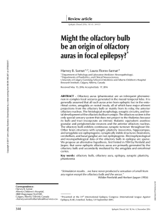 Might the olfactory bulb be an origin of olfactory auras in focal