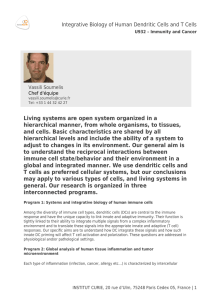 Living systems are open system organized in a hierarchical manner