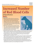 Increased Number of Red Blood Cells