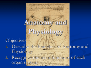 Honors Anatomy and Physiology