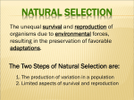 The Two Steps of Natural Selection are