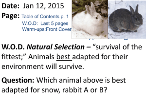 bio 1_13_15 natural selection