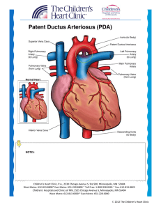 Normal Heart NOTES - Children`s Heart Clinic