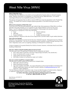 West Nile Virus Factsheet - Thunder Bay District Health Unit