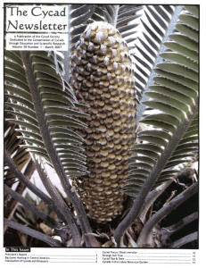 Coevolution of Cycads and Dinosaurs