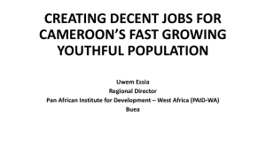 creating decent jobs for cameroon`s fast growing youthful population