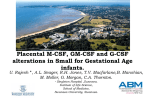 Placental M-CSF, GM-CSF and G-CSF alterations in