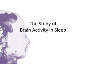 The Study of Brain Activity in Sleep