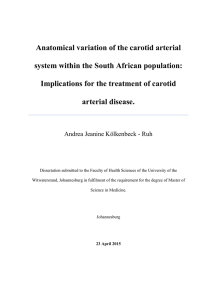 Anatomical variation of the carotid arterial system within the South