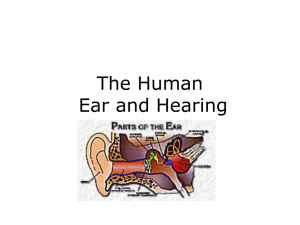 The Human Ear and Hearing