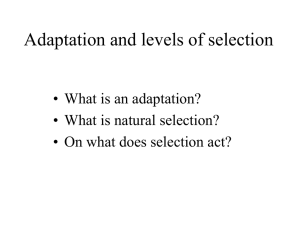 PowerPoint Presentation - What is an adaptation?