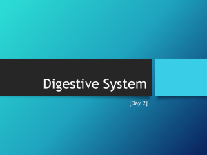 2-digestion-day-2-2015-qs-student