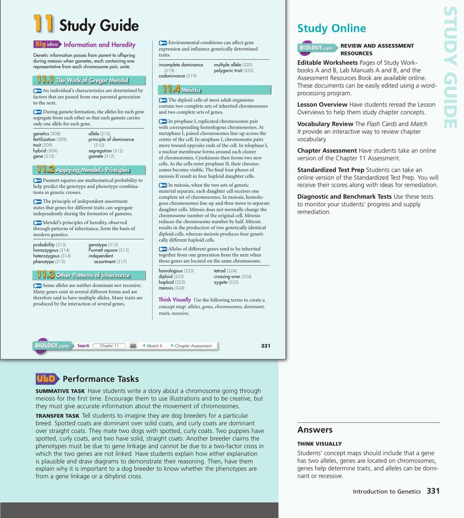 26+ 111 the work of gregor mendel worksheet answer key pdf For Free