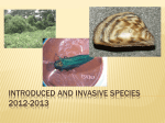 Invasive Species 2010-2011