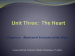 Unit One: Introduction to Physiology: The Cell and General Physiology