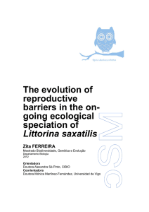 The evolution of non-ecological reproductive barriers