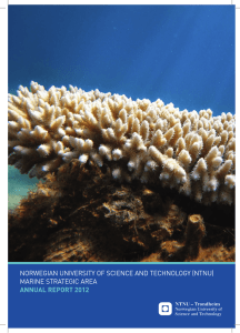 norwegian university of science and technology (ntnu) marine