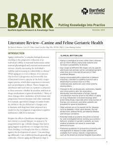 Literature Review—Canine and Feline Geriatric Health