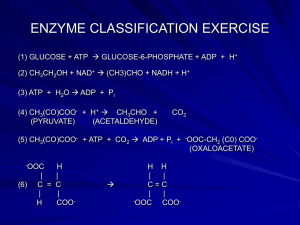 Enzyme_Classificn