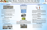 Algae Fish Feed Poster - College of Agriculture and Life Sciences