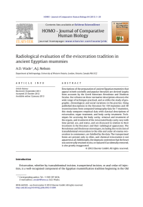 Radiological evaluation of the evisceration tradition in ancient