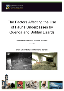 The Factors Affecting the Use of Fauna