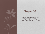 Chapter 30 The Experience of Loss, Death, and Grief