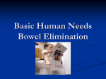 Basic Human Needs Bowel Elimination
