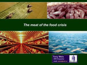 The Meat of the Global Food Crisis