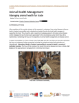 Animal Health Management Managing animal health for trade