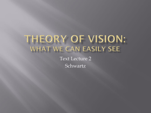Theory of Vision: What We Can Easily See