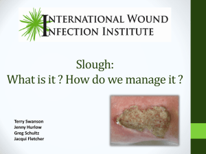 Slough: What is it and How do we manage it