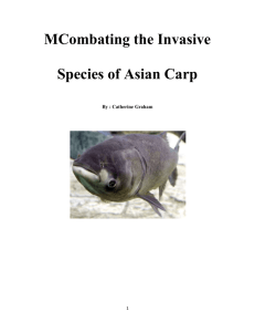 MCombating the Invasive Species of Asian Carp