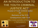 AN INTRODUCTION TO THE YOUTH CRIMIANAL JUSTICE ACT