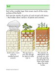 Soil is the crumbly layer that covers much of the rocky surface of the