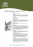 Fact sheet - Acacia parramattensis / Parramatta Green Wattle