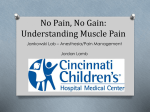 No Pain, No Gain: Understanding Muscle Pain