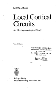 Local Cortical Circuits