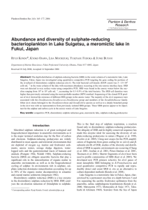 Abundance and diversity of sulphate