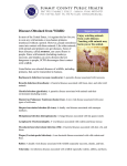 Diseases from Wildlife
