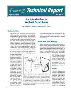 An Introduction to Wetland Seed Banks
