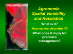Agronomic Spatial Variability and Resolution