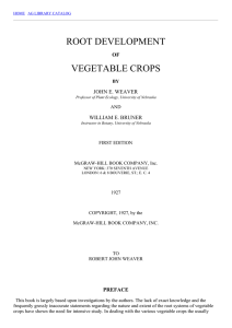 root development of vegetable crops