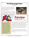 The World`s Largest Deer - Super Teacher Worksheets