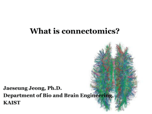 What is connectomics? - Brain Dynamics Laboratory